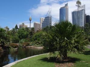 Botany Garden Sydney
